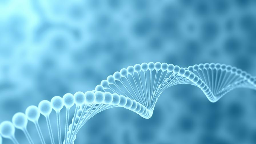 Ято от нанороботи ще може да лекува болести в тялото
