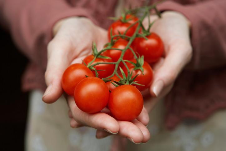 Домати - доматите са чудесен антиоксидант с голямо количество полезни вещества и около 94% вода;
