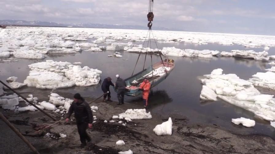 Най-свирепият хищник в океана в леден капан