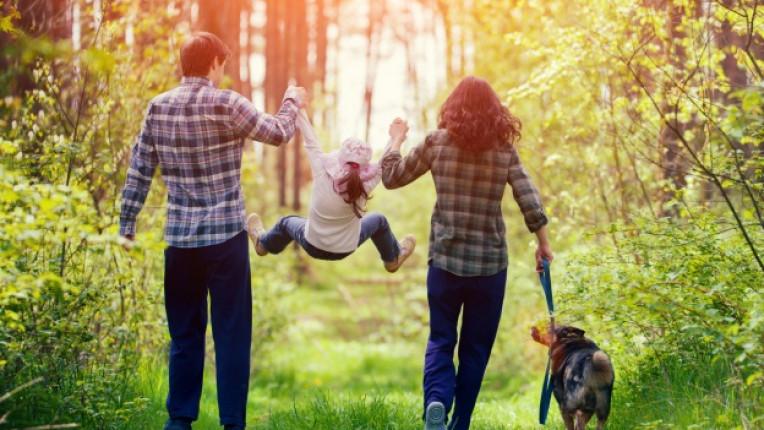 природа семейство