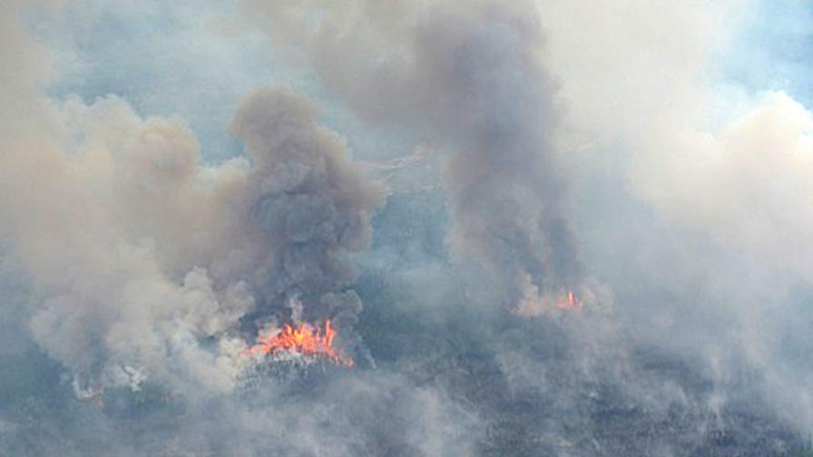 Пожар евакуира цял град в Канада
