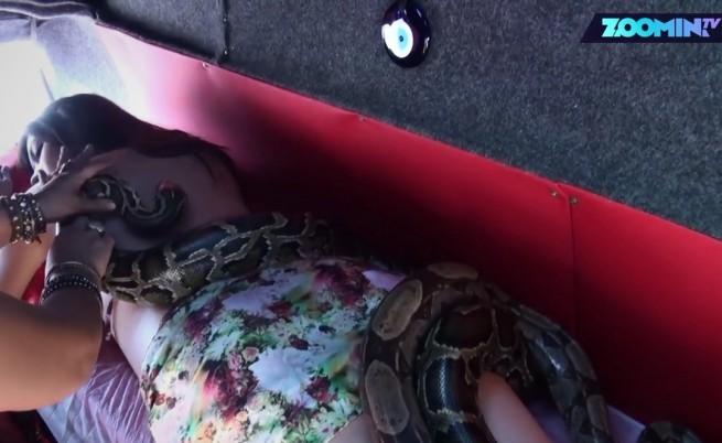 Масаж със змии срещу страх и стрес (Видео)