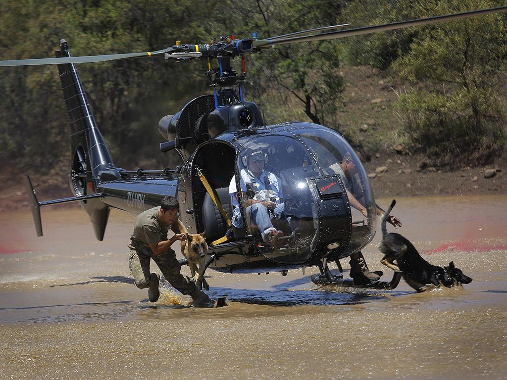 Южна Африка води война срещу бракониерството с вертолети, самолети за наблюдение и дронове, но едно от най-ефективните оръжия в арсенала на анти-бракониерство идва в кучешки форма.