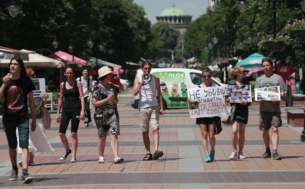 """Протестиращите искат промяна в законодателството и """"да се приравни убийството на всяко едно животно с убийството на хора. Искаме животът на животните да се третира по същия начин, както животът на хората"""""""
