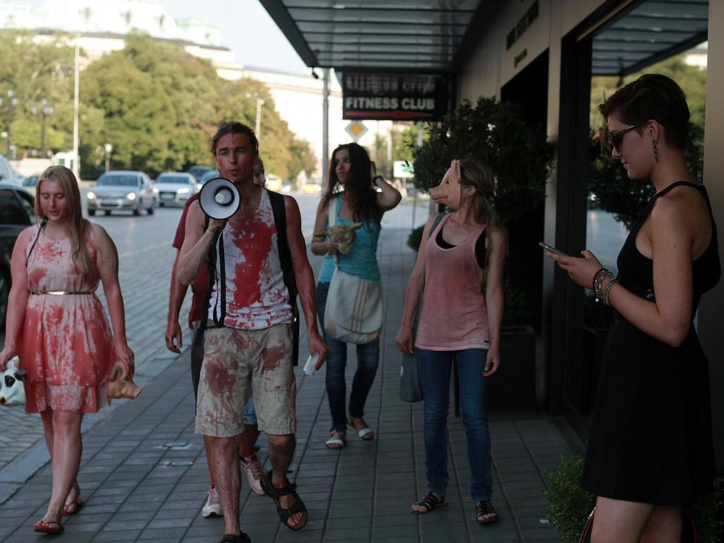 """""""Икаме промяна в законите, с които да се спрат убийствата на животни"""", разясни Никола Донев. Той е инициаторът на протеста. По негова идея десетимата вегани пред парламента се опръскаха с кръв. """"Изкуствена е, тъй като ние сме против убийствата"""" След като окъпани веганите тръгнаха по жълтите павета, те срещнаха шокираните погледи на минувачите. Протестиращите дефилираха по """"Витошка"""", където направиха още една акция. Един от протестиращите беше легнал, а останалите с маски на овце, прасета, крави го ядоха символично, както хората си похапват убитите животни."""