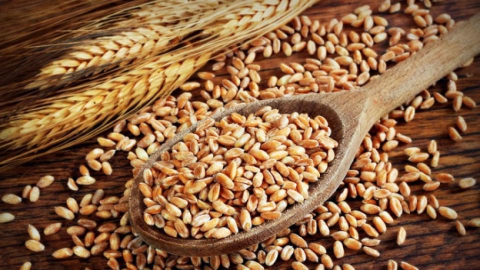 Глутенът в храните: какво трябва да знаем за него