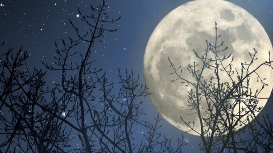 Луната се приближава рекордно близо до Земята