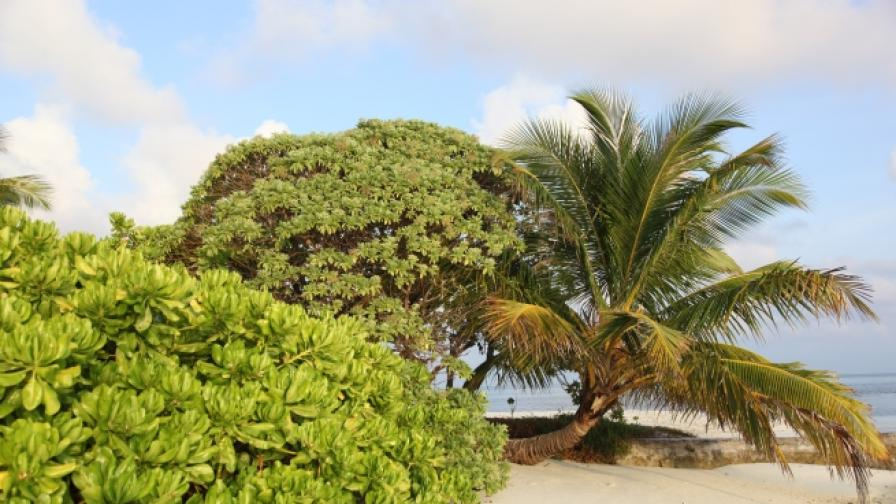Запознайте се с райския остров Худуранфуши