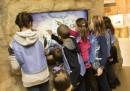 Деца се забавляват с екстремни спортове в Музейко