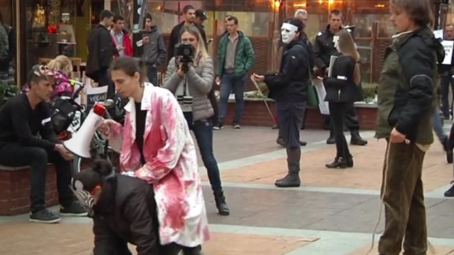 Вегани се държат като животни в цирк на нов протест