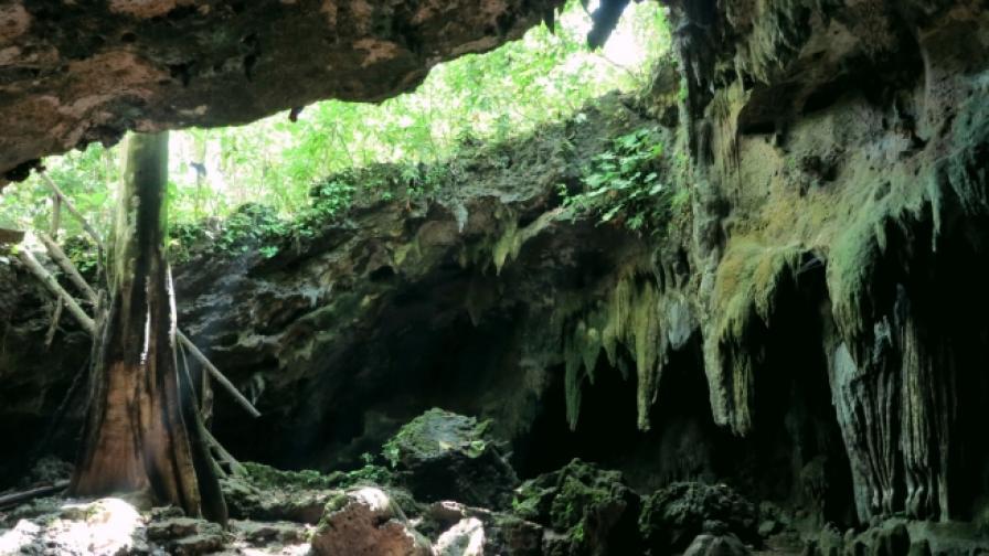 Иманяри обгазени в пещера край Пловдив