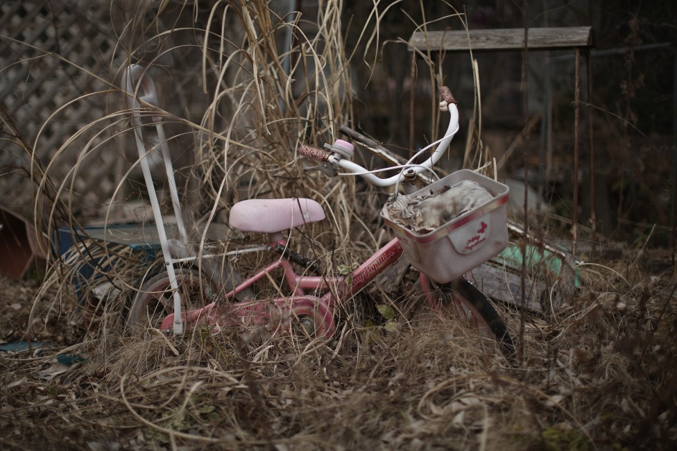 - Gрадската зона край японската ядрена централа изглежда като извадена от апокалиптичен филм – недокосната и необитаема