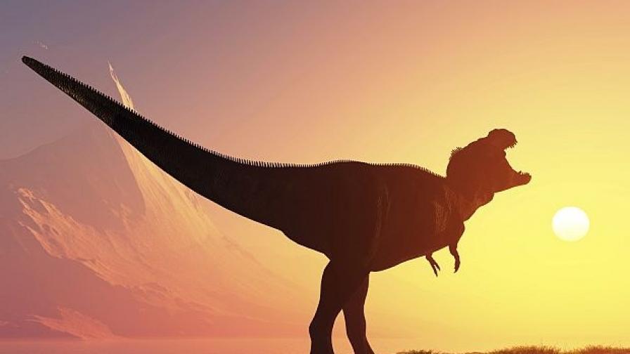 Опашка на динозавър доказа теориите на учените