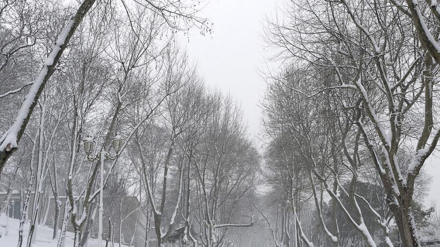 Студ и мъгли, какво време ни чака