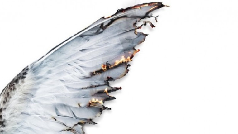 крила галерия