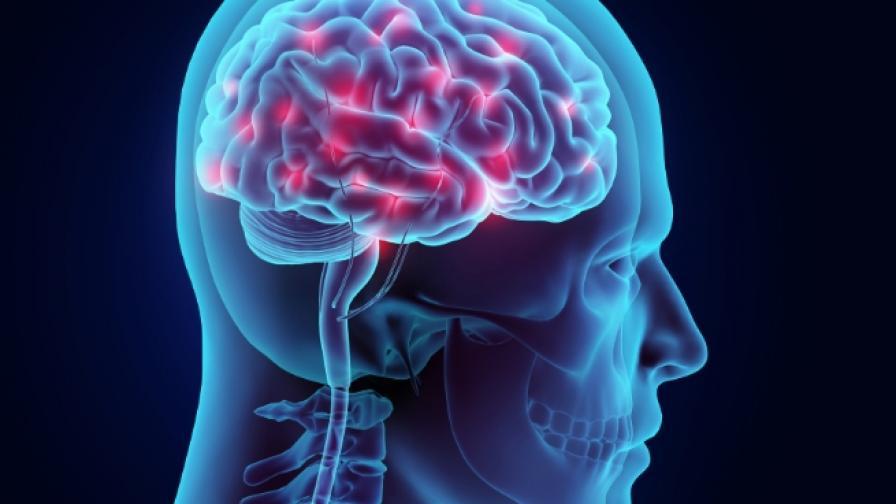 Животът в Космоса се отразява драстично на мозъка