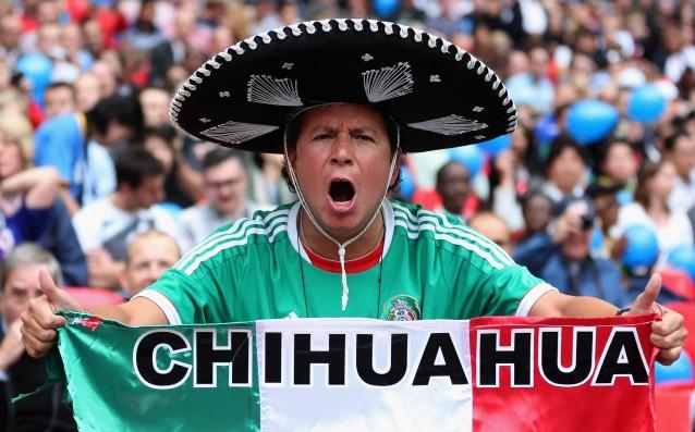 Мексиканските фенове няма да гледат футбол на живо известно време<strong> източник: Gulliver/Getty Images</strong>