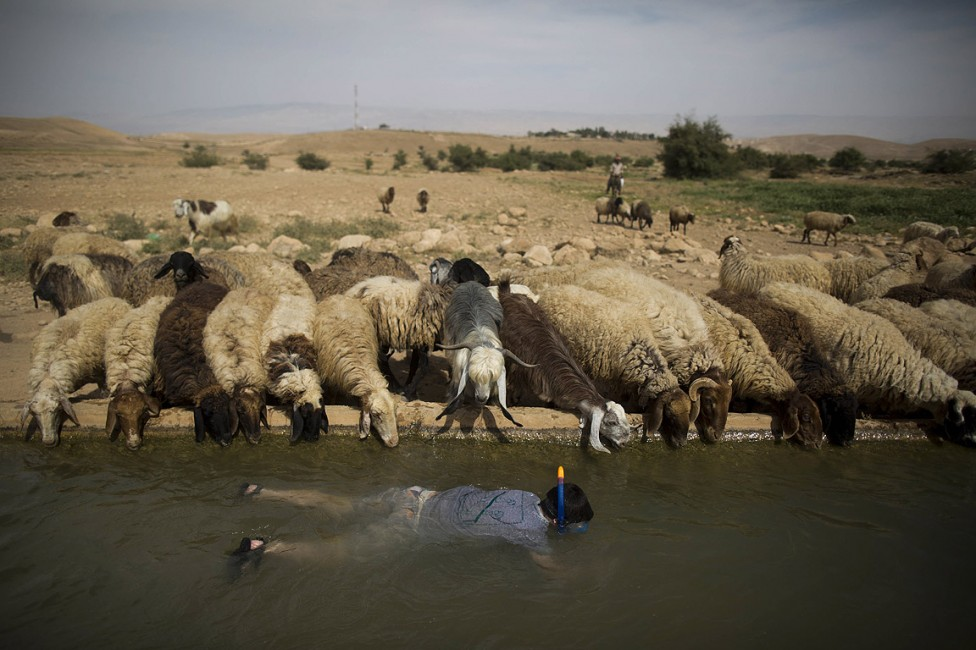 - На 22 март 1992г. правителства и международни организации потвърждават, че чистата вода е живот и нашият живот зависи от това, как защитаваме...