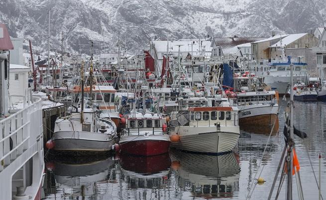 Част от флотилията на Хенингсвер, където постоянно живеят 450 човека. Целта им е да захранват полската фабрика за обработка на риба. Дневно тя изкупува (в сезона) между 80 и 100 тона треска.