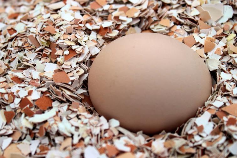 Великден празник яйца любов