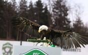 Лудогорец - Левски 0:0<strong> източник: LAP.bg, Иван Иванов</strong>