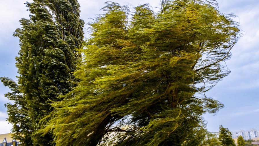 <p>След бурите идва ураганен вятър</p>