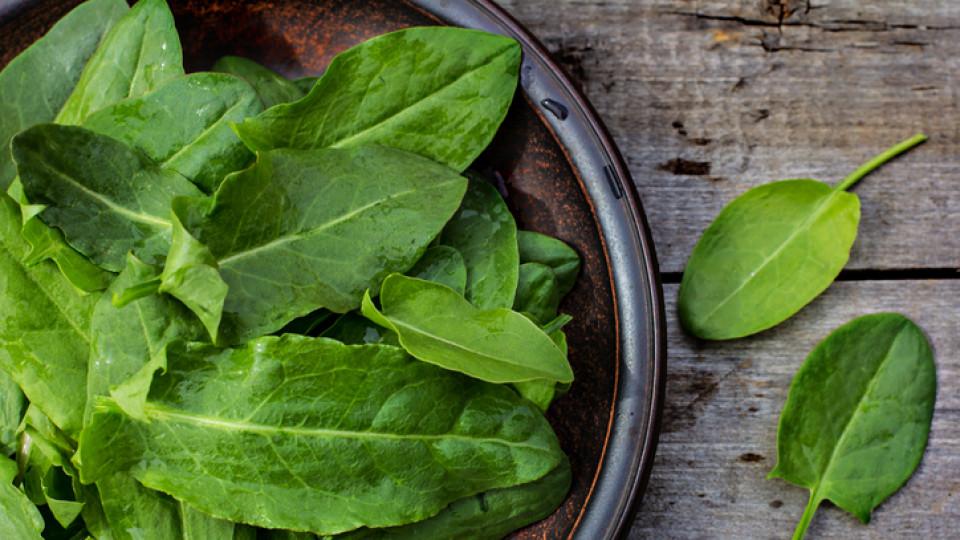 11 рецепти за вдъхновяващи ястия с властелина на пролетната кухня - лапад