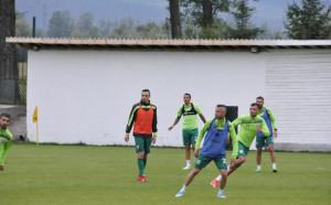 Бербатов започна тренировки с Берое