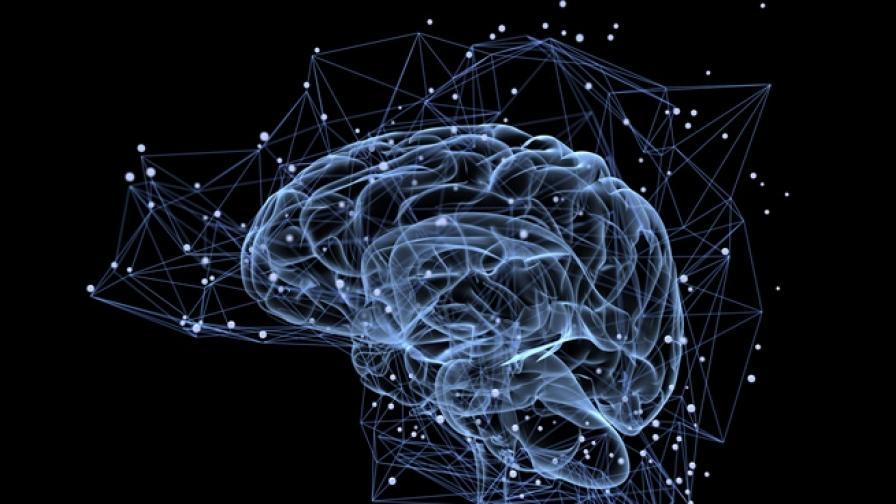 Човешкият мозък може да създаде 11 измерения
