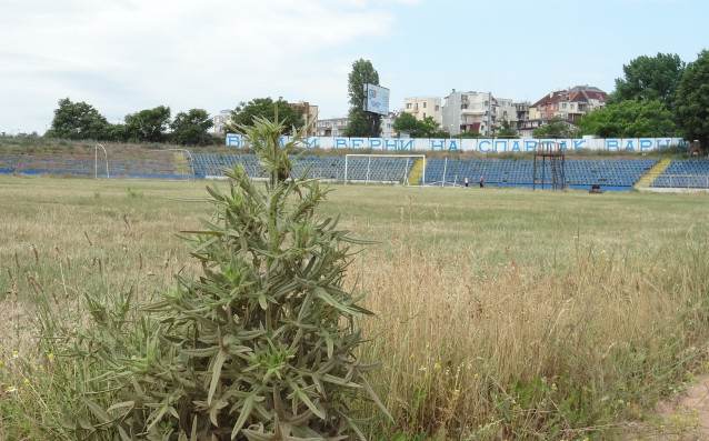 Стадион Спартак източник: Gong.bg