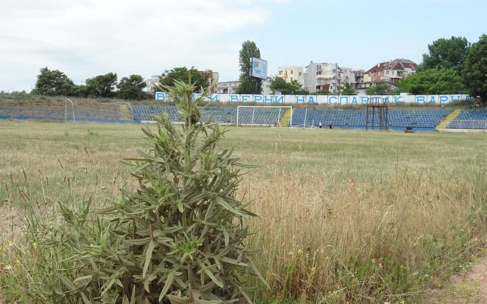 Падение! Това ли заслужава българският футбол?