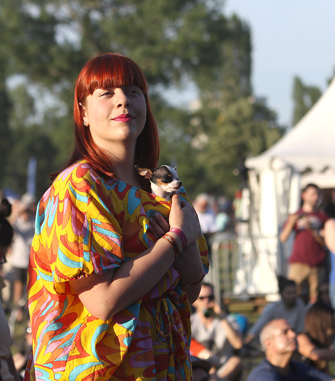 Фестивалът традиционно отбелязва началото на лятото, представяйки най-доброто от световната джаз музика под открито небе