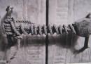 Проклятието на фараоните ли опазва една ключалка 3200 г.