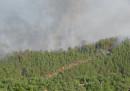 Горският пожар край с. Стара Кресна
