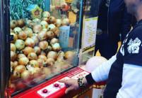 10 щури неща, които може да видите само в Япония