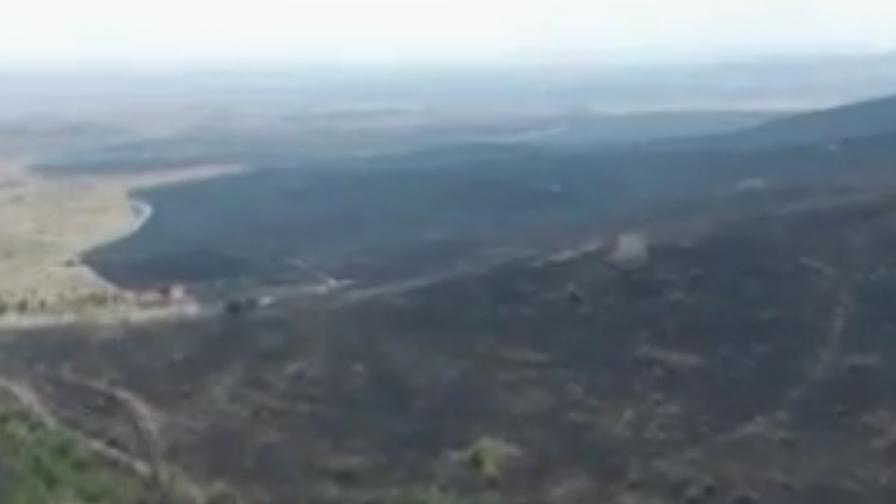 Огромни щети от пожарите в Бургаско и Пловдивско
