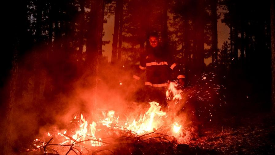 Огънят в Пирин застраши село, министърът е притеснен