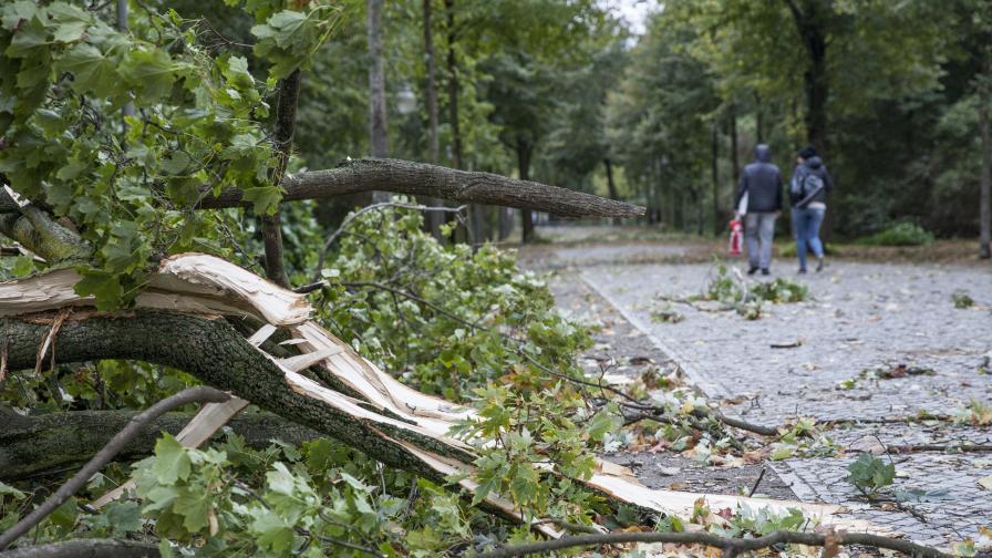 Буря отнесе Германия с вятър над 100 км/ч, има жертви