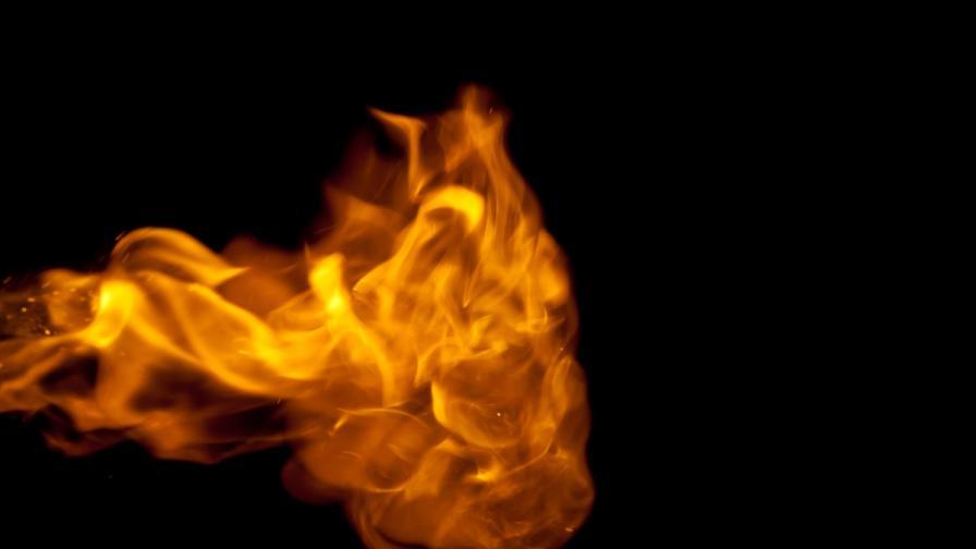 <p>Пожар в Драгоманското блато</p>