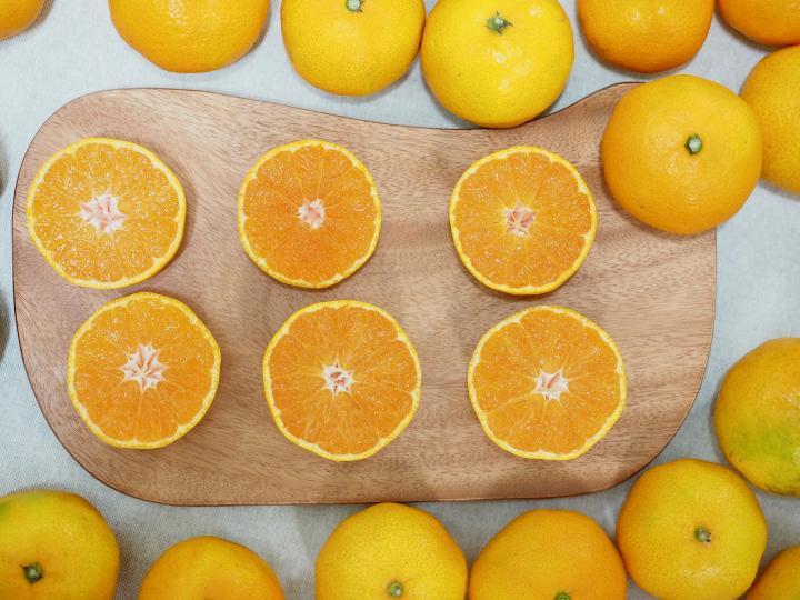 <p>Познатият на всеки българин цитрусов плод, който преобладава през настоящия зимен сезон на пазара, съдържа витамини С, В1, РР, В2, А, фосфор, желязо, калций, магнезий, натрий, лимонова и аскорбинова киселина, тиамин и пектин.</p>  <p>Полезните свойства на портокала могат да се използват за подпомагане функциите на ендокринната, нервната, сърдечно-съдовата и храносмилателната система на човека.</p>