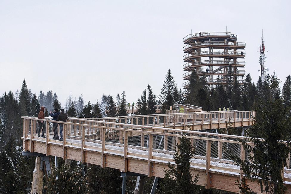 - Туристи се разхождат и правят снимки по високия 24-метров дървен мост, водещ до наблюдателната 32-метрова кула в Бахледова долина в планината Татри...