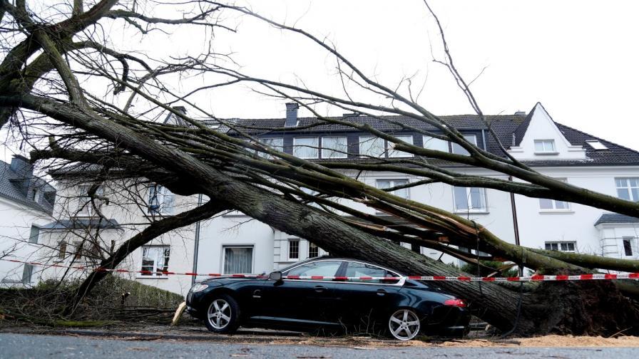 """Бурята """"Фридерике"""" уби 10 души в Европа"""