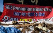 Протести в Пьонгчанг<strong> източник: Gulliver/GettyImages</strong>