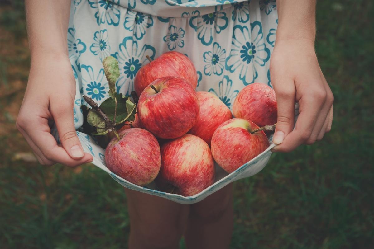 Ябълки: този плод е сред най-полезните в борбта с лошия дъх.