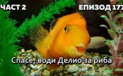 Спасе, води Делио за риба