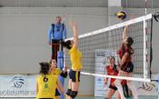 Volley Mania