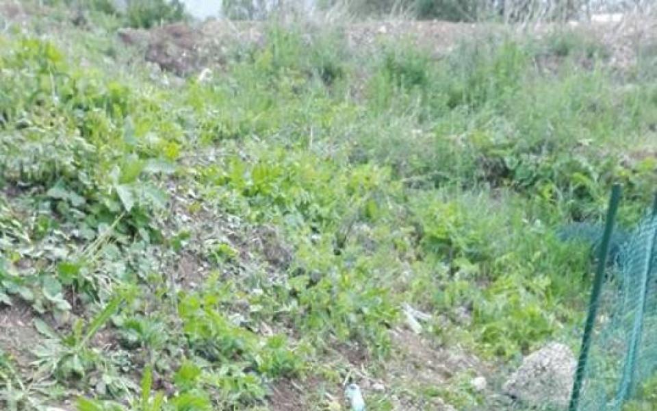 Царско село показа пораженията след дербито