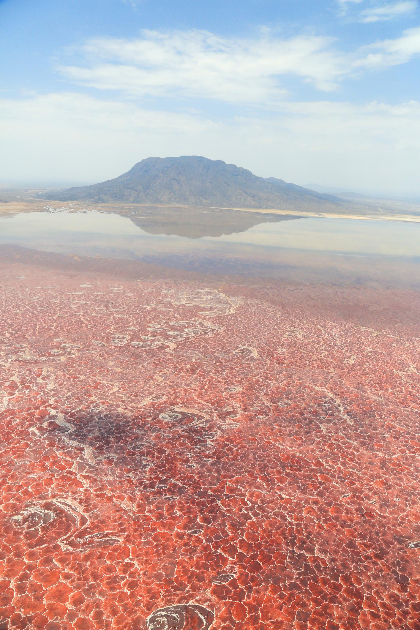 Може да изглежда като извънземен пейзаж, но тази сюрреалистична картина е всъщност снимката на езерото Натрон в Източноафриканската рифтова долина в Танзания. Кората от алкалната сол на дъното му е толкова опасна, че повечето живи същества умират просто ако влязат в контакт с тях. Силната миризма на сероводород, идващ от повърхността на езерото всъщност се дължи на токсични пари. Езерото е много красиво, тъй като през сухия сезон цианобактерии оцветяват водите му в червено, оранжево и розово, а бреговете му побеляват от отложената при изпаренията сол. С тези бактерии се хранят розови фламинго – всъщност точно така те придобиват специфичния цвят на перата си. А във водите с температура надхвърляща 40 градуса по Целзий, рискувайки буквално да се сварят във всеки един момент, плуват риби тилапия, които са ендемични за това езеро.