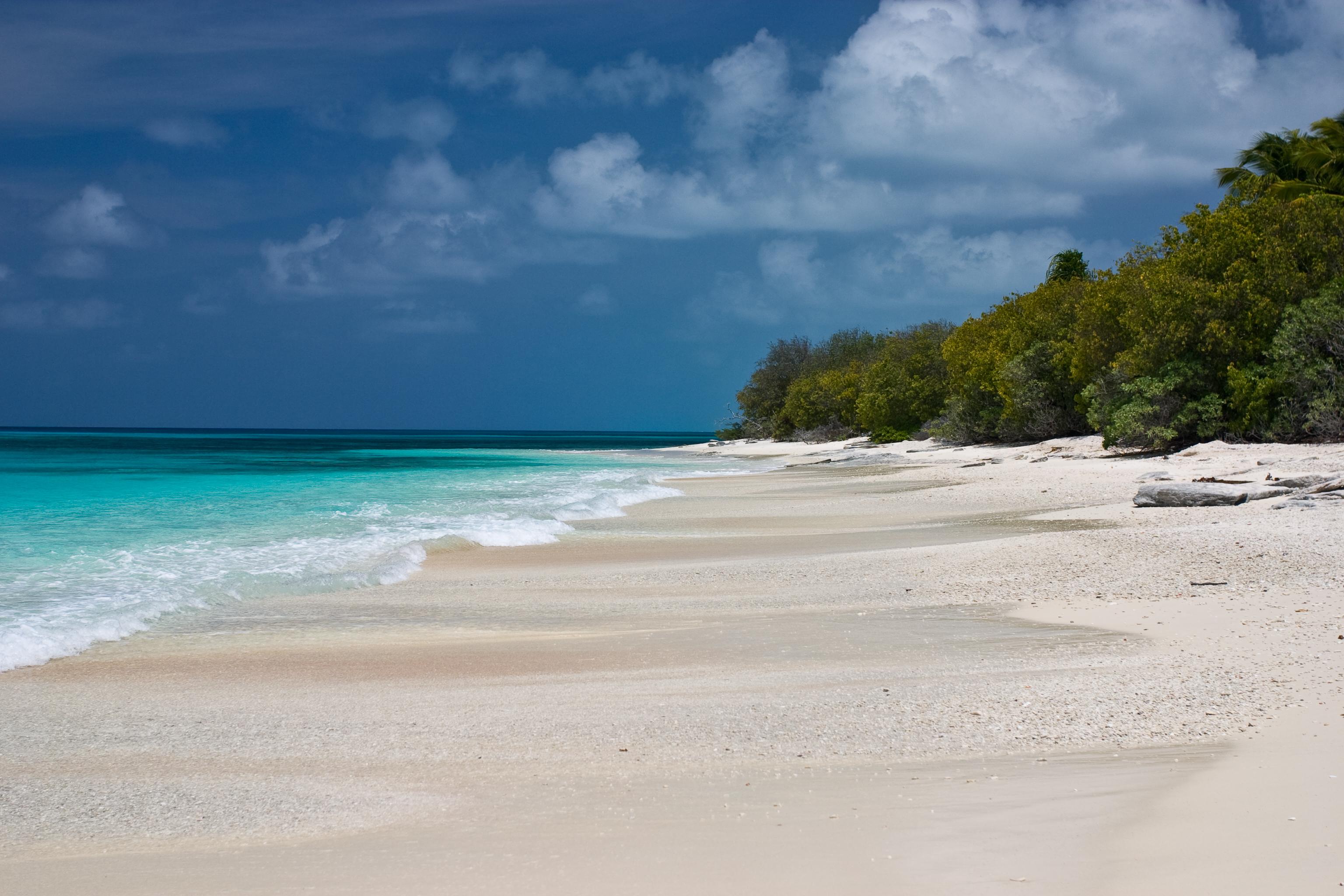 """Атолът Бикини - това райско кътче в Тихия океан е превърнато в смъртоносно място от хората. Между 1946 г. и 1958 г. тук са извършени 23 ядрени опитa от американските въоръжени сили. Атолът е наричан Бикини от местното население, което на местния език означава """"кокосово поле"""". Плажовете на островите му са с пясък като коприна. Но за военни цели атолът е превърнат в радиоактивна пустош. Жителите са принудени да изоставят домовете си и до днес това място е опасно за живите организми. Консумирането на местни продукти, например плодове, може да добави значително количество радиация в организма. Официално мястото е обявено за безопасно през 1997 г. от Международната агенция за атомна енергия. Реално обаче заселваното там """"не се препоръчва""""."""