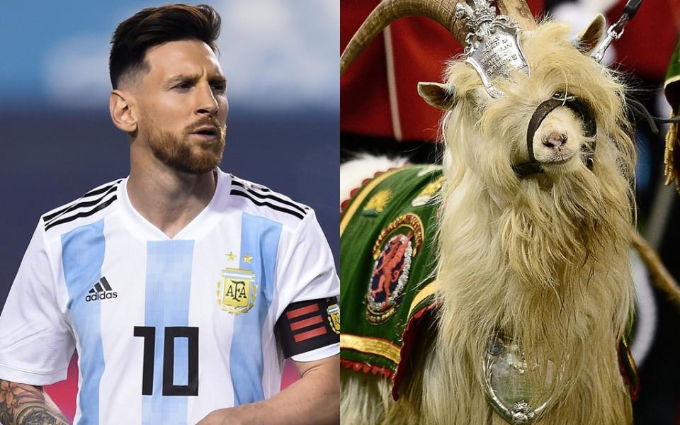 Списание направи култова фотосесия на Меси с... кози